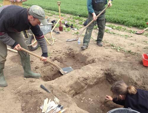 В Дании найден клад серебряных монет ХVI века